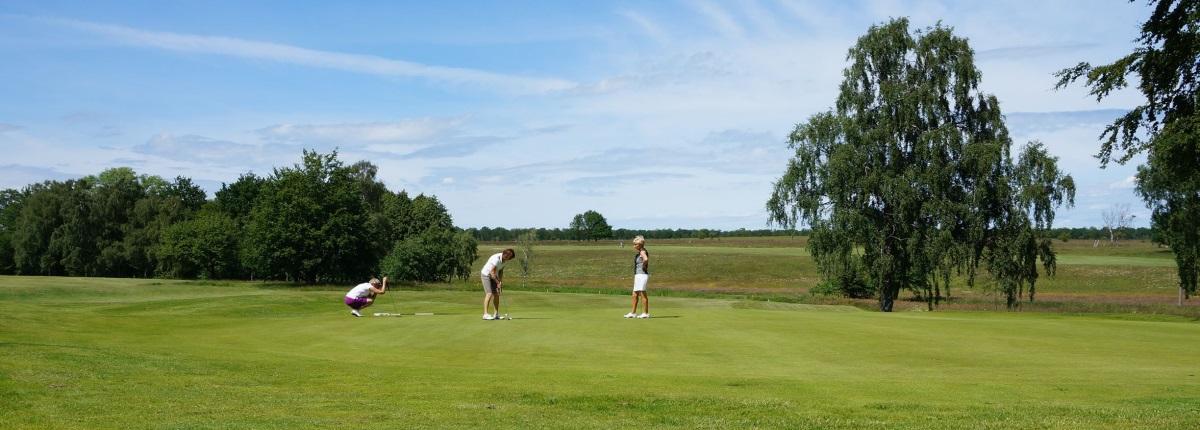 skatteverket friskvård golf